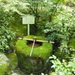 大徳寺 高桐院 袈裟型の手水鉢