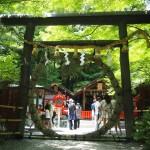 野宮神社 茅の輪 6月