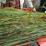 元祇園梛神社 持ち帰り用の茅
