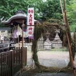 大将軍神社 茅の輪