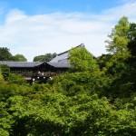 東福寺 7月