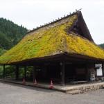 大原神社 7月