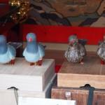 八幡山の鳩