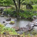 雨の円山公園
