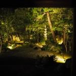 春光院 夏の夜の特別公開