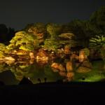 二条城 二之丸庭園 初のライトアップ 8月