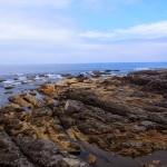 城嶋からの海