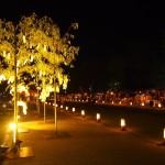 岡崎プロムナード 星の響宴