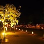 京の七夕 岡崎プロムナード 星の響宴 8月