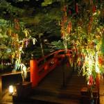 北野天満宮 御土居のライトアップ 8月
