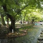 上賀茂神社 ならの小川