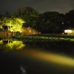 涉成園 ライトアップ 8月