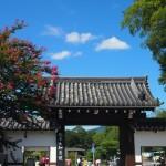 円山公園(知恩院南門)