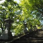 桑田神社 9月