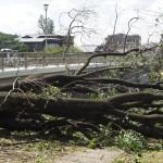 台風21号の被害 荒神橋