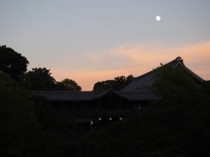 東福寺と月