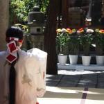 市比賣神社 重陽祭 9月
