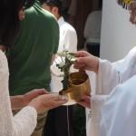 市比賣神社 重陽祭 菊酒