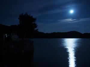 広沢池と満月