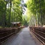 竹の径 9月