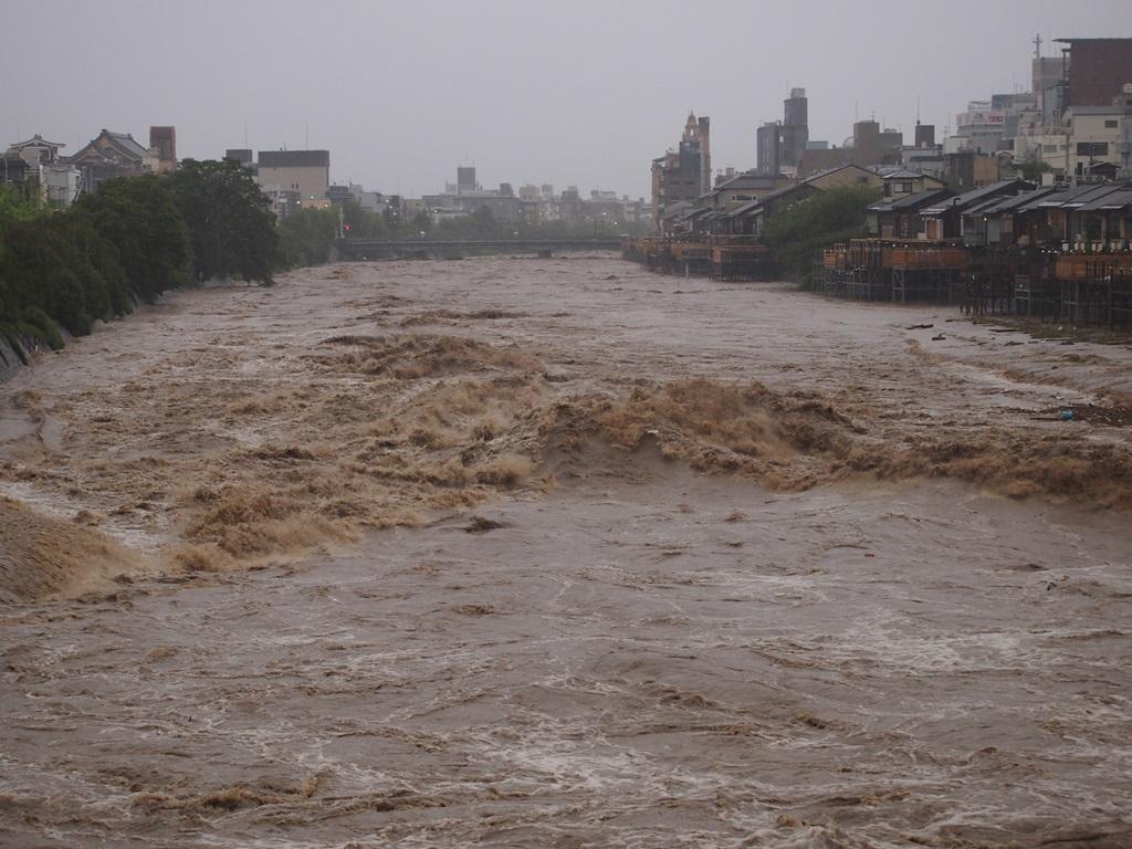 激しく増水した鴨川 三条大橋から. 台風21号