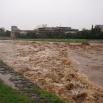 激しく増水した鴨川 荒神橋下流