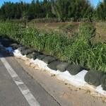 桂川 堤防に積まれた土のう