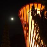 京都府立植物園 中秋の名月