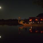 大覚寺 観月の夕べ 9月