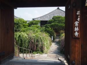 常林寺 萩の寺