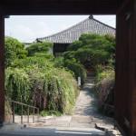 常林寺 9月