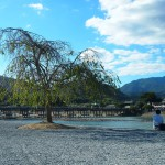 嵐山公園 中之島