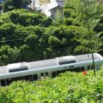 椿井大塚山古墳 古墳を通過する列車