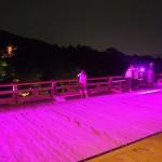清水寺 ピンクライトアップ 2014年