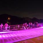 清水寺 ピンクライトアップ 本堂