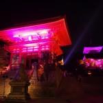 清水寺 ピンクライトアップ 10月