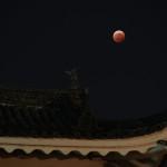 皆既月食と二条城