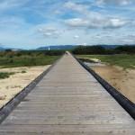 流れ橋 10月