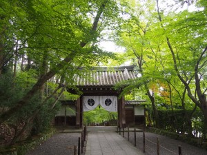 粟生光明寺