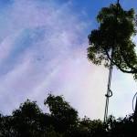 彩雲(色彩強調)