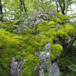 宝厳院 獅子岩