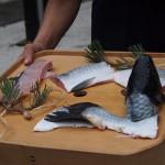 式包丁「松の鯉」 松の漢字になっている