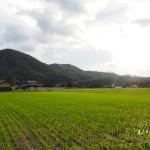 京丹波町尾長野 10月