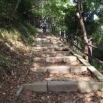 経ヶ岬灯台への道