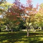 城南宮 平安の庭