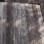丹後震災記念館 震災記念塔