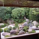妙心寺 退蔵院 10月