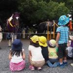 時代祭 馬を見る園児