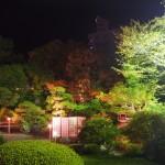 楽々荘 ライトアップ