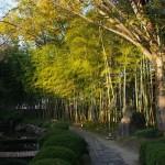 松花堂庭園 10月